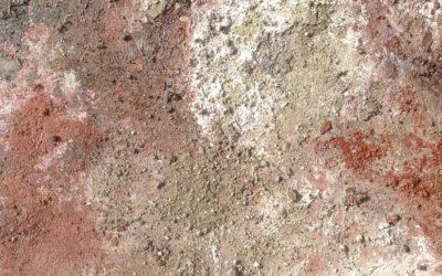 Shaftesbury stone (10)